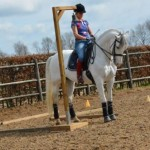 working-equitation